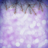 Colorful abstract background. Colorful Christmass background with fir branch frame Royalty Free Stock Photo