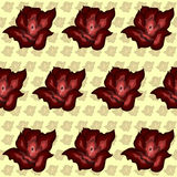 Colorful abstract background red roses pattern Stock Photos