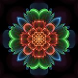 Colorful abstract symmetrical flower. Colorful abstract design in fractal art style - symmetrical flower glowing with orange, green and blue colors Stock Photography