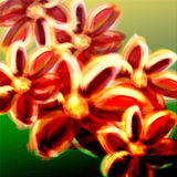 Colorful abstract flowers digital Stock Photos