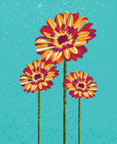 Colorful abstract flowers illustration. Stock Image