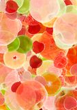 Colorful abstract fruit background Royalty Free Stock Photography