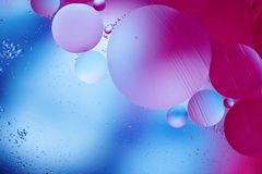 Colorful abstract macro background. Colorful abstract macro background with oil drops in water Stock Photography