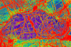 Colorful, abstract pattern of mineral in a polarizing micrograph Royalty Free Stock Photography