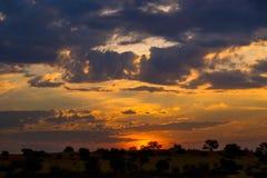 Colorful african sunset in Kalahari desert royalty free stock photography