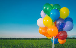 Colorful Air Balloons Banner Royalty Free Stock Image