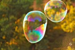 Colorful air soap big two bubbles Stock Photos