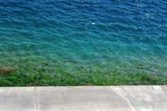 Colorful Algae-filled waters. Off the seaside walkway's ledge. There are rocks, algae and seaweed in beautiful green and blue colors Stock Photos