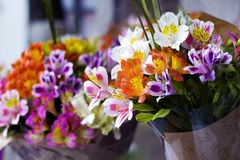 Colorful Alstroemeria flowers. A large bouquet of multi-colored alstroemerias in the flower shop are sold in the form of a gift bo. X. The farmer`s market. Close royalty free stock images