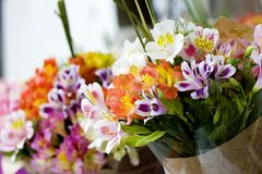 Colorful Alstroemeria flowers. A large bouquet of multi-colored alstroemerias in the flower shop are sold in the form of a gift bo stock images
