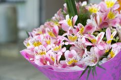 Colorful Alstroemeria flowers. A large bouquet of multi-colored alstroemerias in the flower shop are sold in the form of a gift bo. X stock photography