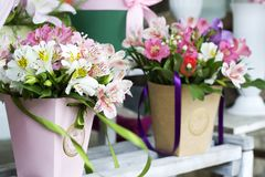 Colorful Alstroemeria flowers. A large bouquet of multi-colored alstroemerias in the flower shop are sold in the form of a gift bo. X. The farmer`s market. Close stock photography