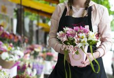 Colorful Alstroemeria flowers. A large bouquet of multi-colored alstroemerias in the flower shop are sold in the form of a gift bo. X. The farmer`s market. Close stock images
