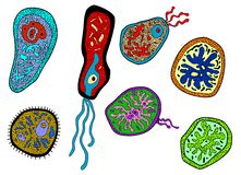Colorful amebas, amoebas, microbes and germs set Royalty Free Stock Photography