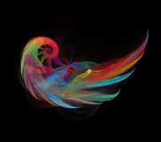 Colorful angel wing. Fractal graphics Stock Photo