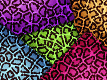Colorful animal skin Royalty Free Stock Photos