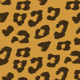 Colorful Animal skin textures of leopard. Royalty Free Stock Image