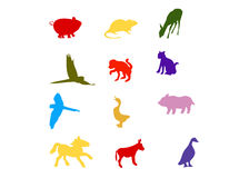 Colorful animals silhouette Royalty Free Stock Images