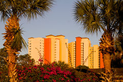 Colorful apartment buildings and palm trees Stock Photography