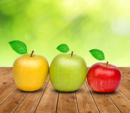 Colorful apples Stock Photo