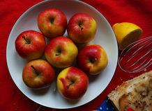 Colorful apples Royalty Free Stock Photo