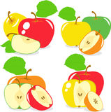 Colorful apples slices, collection of  illustrations Stock Image