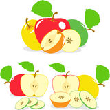 Colorful apples slices, collection of  illustrations Stock Photography