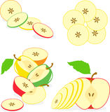 Colorful apples slices, collection of  illustrations Stock Photo