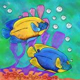 Colorful Aquarium Fishes Royalty Free Stock Image