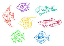 Colorful aquarium fishes set Stock Photo