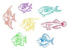 Colorful aquarium fishes set Stock Photo