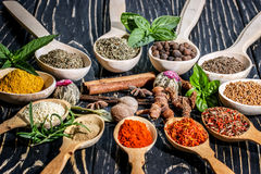 Colorful aromatic spices and herbs on an old  wooden backgrownd Royalty Free Stock Image