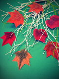 Colorful artificial fabric leaves royalty free stock photo