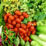 Colorful Asian Vegetables. Stock Image