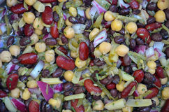 Colorful assorted bean salad Royalty Free Stock Photo