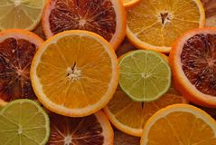 Colorful sliced citrus fruit Royalty Free Stock Photos