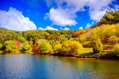 Colorful Australian autumn in Adelaide Hills. Colorful Australian autumn in Mount Lofty, Adelaide Hills, South Australia royalty free stock photo