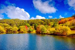 Colorful Australian autumn in Adelaide Hills. Colorful Australian autumn in Mount Lofty, Adelaide Hills, South Australia royalty free stock image