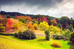 Colorful Australian autumn in Adelaide Hills. Colorful Australian autumn in Piccadilly, Adelaide Hills, South Australia stock images
