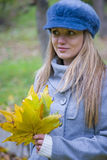Colorful autumn stock images
