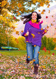 Colorful autumn 8 Stock Photography