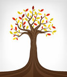 Colorful autumn ash tree conceptual art isolated Royalty Free Stock Photo