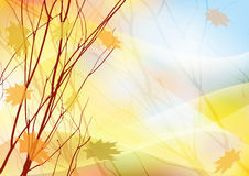 Colorful autumn background Royalty Free Stock Image