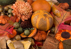 Colorful Autumn Background Royalty Free Stock Photos