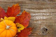 Colorful Autumn Background with Country Charm Royalty Free Stock Image