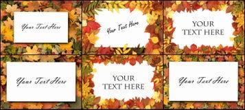 Colorful autumn background. Stock Photo