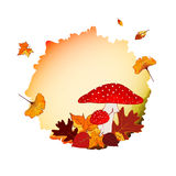 Colorful Autumn Background Stock Photography