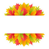 Colorful Autumn Background with Leaves Royalty Free Stock Images