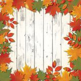 Autumn background with red falling leaves Royalty Free Stock Photo