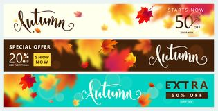 Colorful autumn banner set. Fall sale background with bright maple leaves Stock Image